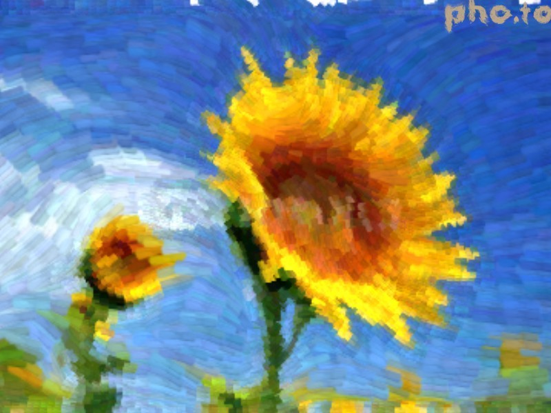 Van Gogh style photo effect converts a pic into a painting imitation.