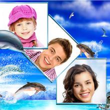 Dreier Delfincollage