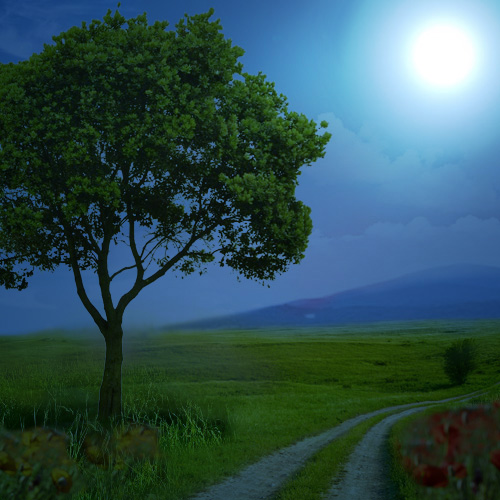 Free Online Lighting Photo Effect To Turn Day Into Night