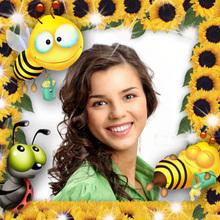 Bienen Rahmen